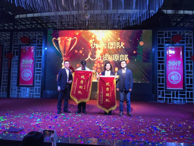 武漢驛路通科技2019年迎新年會成功舉行