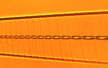 Chiral光纤:光纤无源器件的新方向