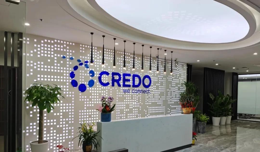 Credo完成D轮一亿美元融资,华登国际、中金资本及BlackRock领投