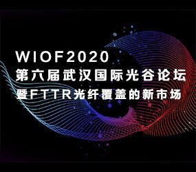 第六届武汉国际光谷论坛(WIOF2020)